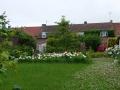Willocquet Backyard